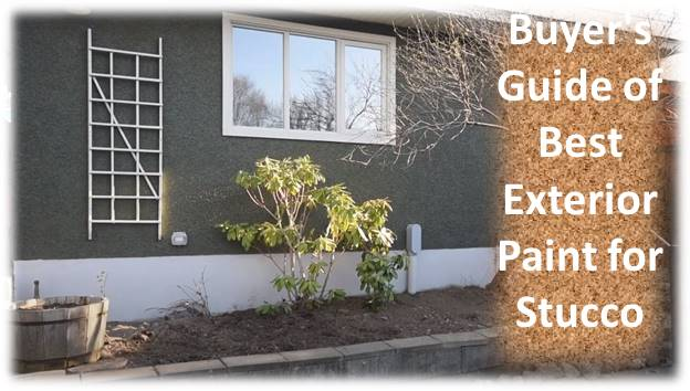 Buyer's Guide of Best Exterior Paint for Stucco